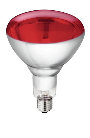 SPAARLAMP WIT/ROOD