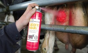 UDDER MARK uiermerkspray 500ml rood/groen